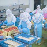 スーパーの精肉部門のアルバイトの仕事内容と体験談